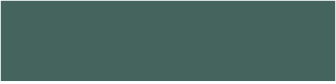 widget-ico